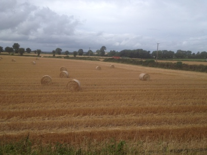 Richardsons_hay bales