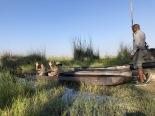 Mokoro boat in Botswana